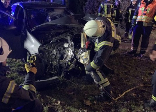 Pkw fährt gegen Baum – Fahrer schwer verletzt