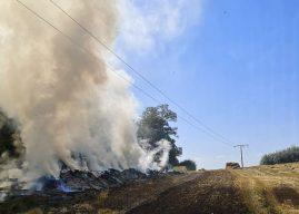 Waldbrand in letzter Minute verhindert